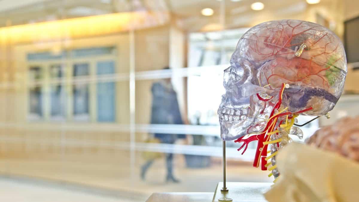 Udar mózgu – przyczyny, objawy i zapobieganie