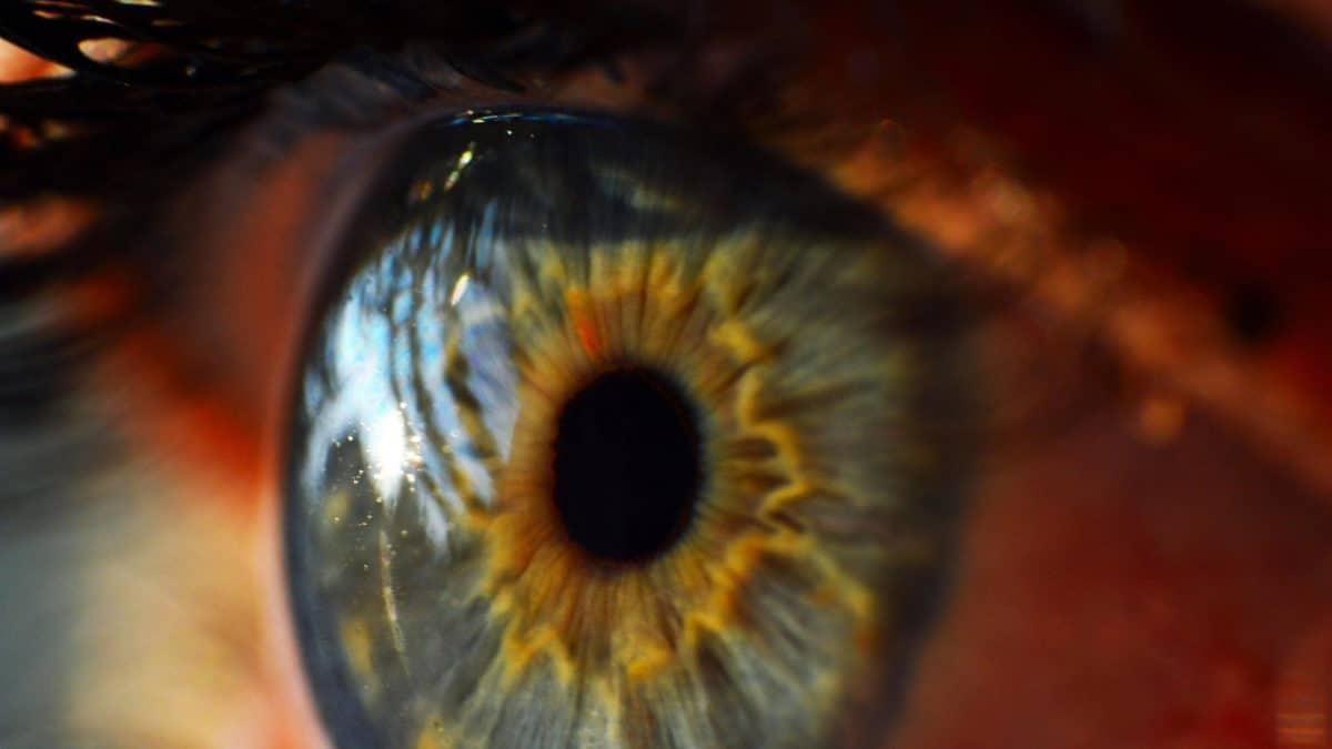 Pracownicy tych branż narażeni są na problemy ze wzrokiem