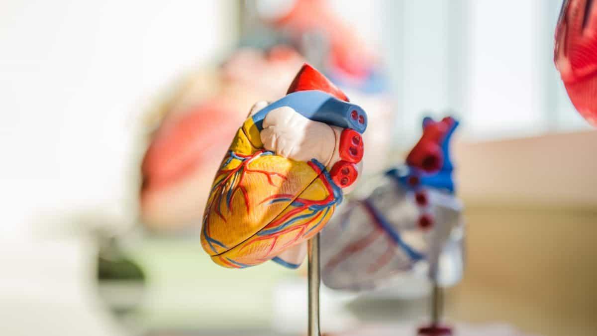Choroby serca pogarszają rokowania przy COVID-19: prawda czy fałsz?