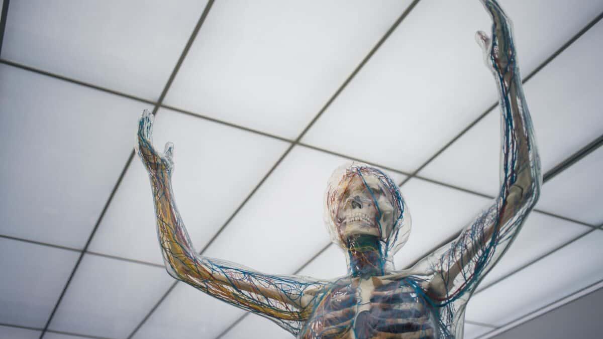 Czym są i komu grożą neuropatie?