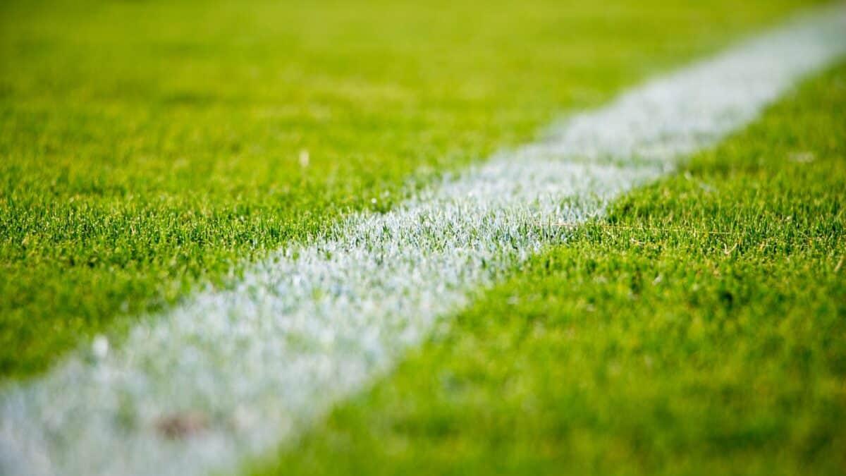 Zdrowy jak Lewandowski, czyli co badać, uprawiając sport