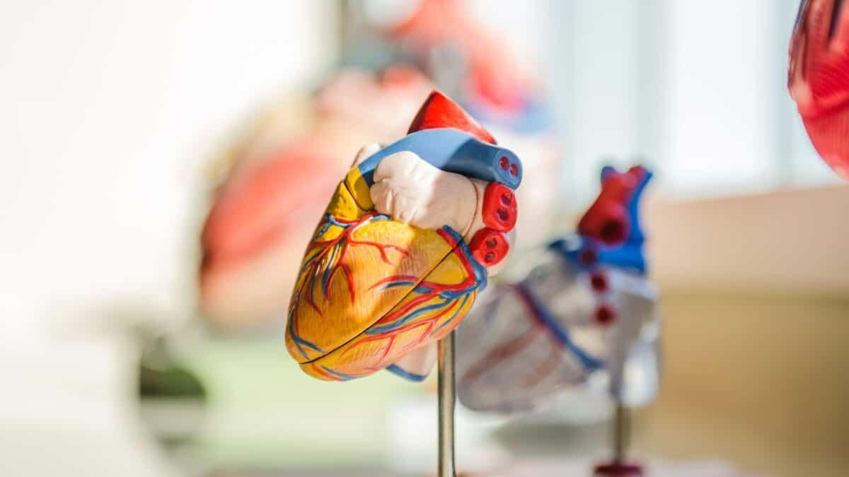 Jakie są objawy wysokiego cholesterolu?